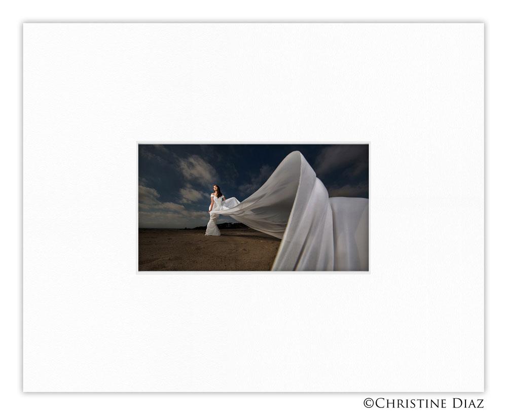 christine-diaz-entry4-comp.jpg